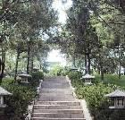 景点大全-西安唐大慈恩寺遗址公园