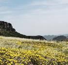 景点大全-山西沁水历山国家级自然保护区