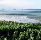 景点大全-黑龙江乌伊岭国家级自然保护区