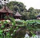景点大全-上海曲水园
