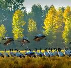 景点大全-威宁草海国家级自然保护区