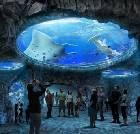 景点大全-三亚海螺姑娘创意文化园
