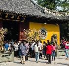 景点大全-上海龙华寺