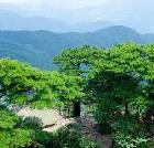 景点大全-岳西妙道山风景区
