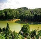 景点大全-九龙山国家森林公园