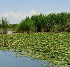 景点大全-新疆库尔勒莲花湖旅游区