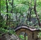 景点大全-抱犊崮国家森林公园
