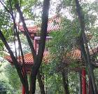 景点大全-永州祁阳浯溪碑林景区
