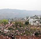 景点大全-成都桃花故里旅游景区