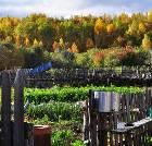 景点大全-呼伦贝尔市室韦俄罗斯民族乡