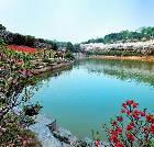 景点大全-湖南省森林植物园