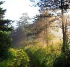 景点大全-安康化龙山国家级自然保护区