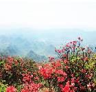 景点大全-桂林大境盘古山