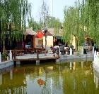 景点大全-咸阳宏兴码头生态观光园