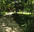 景点大全-新津斑竹林公园