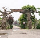 景点大全-沭阳苏北花卉示范园
