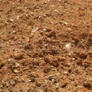 进口红土镍矿