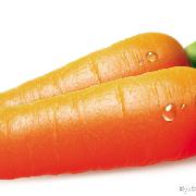 陕西秤杆红萝卜