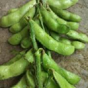 沈鲜豆毛豆
