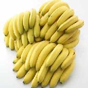 威廉斯香蕉