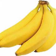 广东香蕉1号